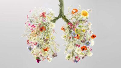 Ο Όμιλος Animus στηρίζει την Παγκόσμια Ημέρα Κατά του Καπνίσματος